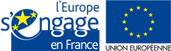 eu-flags2
